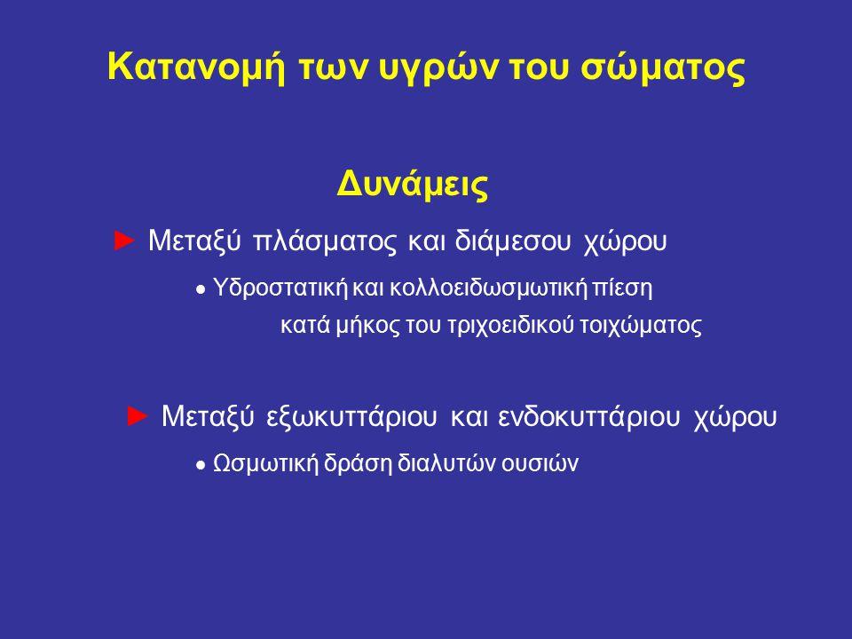 Κατανομή των υγρών του σώματος Δυνάμεις ► Μεταξύ πλάσματος και διάμεσου χώρου  Υδροστατική και κολλοειδωσμωτική πίεση κατά μήκος του τριχοειδικού τοιχώματος ► Μεταξύ εξωκυττάριου και ενδοκυττάριου χώρου  Ωσμωτική δράση διαλυτών ουσιών