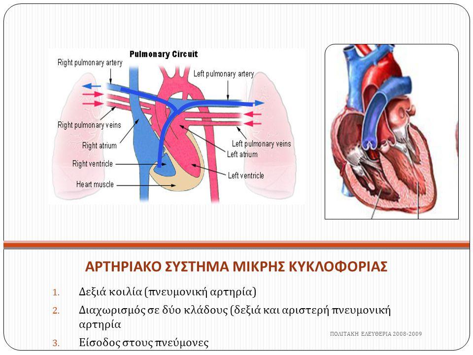 ΑΡΤΗΡΙΑΚΟ ΣΥΣΤΗΜΑ ΜΙΚΡΗΣ ΚΥΚΛΟΦΟΡΙΑΣ 1. Δεξιά κοιλία ( πνευμονική αρτηρία ) 2. Διαχωρισμός σε δύο κλάδους ( δεξιά και αριστερή πνευμονική αρτηρία 3. Ε