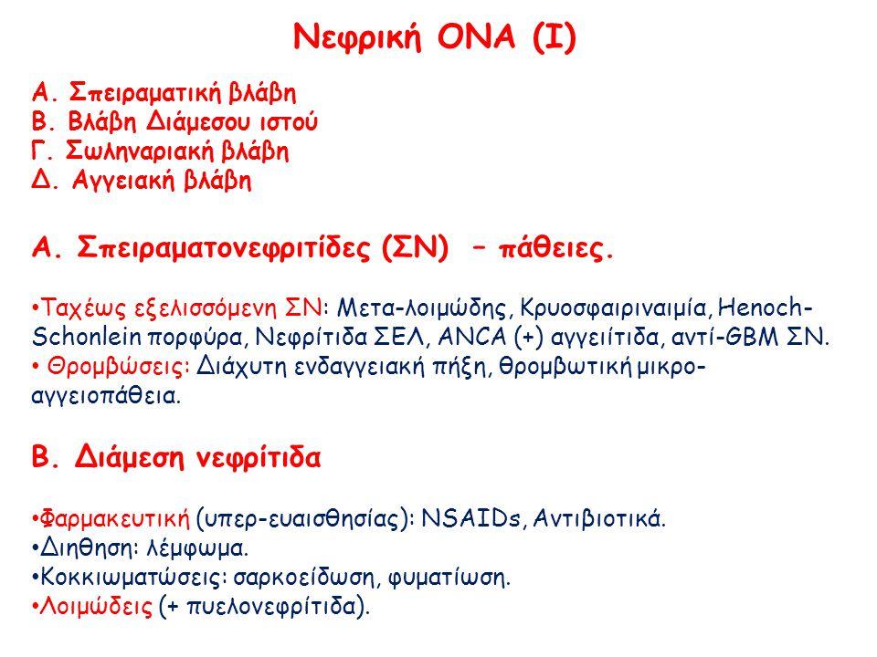 Νεφρική ΟΝΑ (IΙ) Γ.