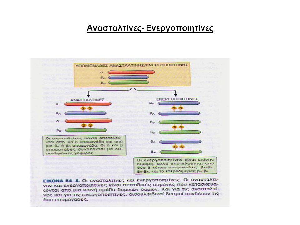 Ανασταλτίνες- Ενεργοποιητίνες