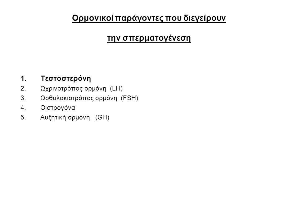Ορμονικοί παράγοντες που διεγείρουν την σπερματογένεση 1.Τεστοστερόνη 2.Ωχρινοτρόπος ορμόνη (LH) 3.Ωοθυλακιοτρόπος ορμόνη (FSH) 4.Οιστρογόνα 5.Αυξητική ορμόνη (GH)