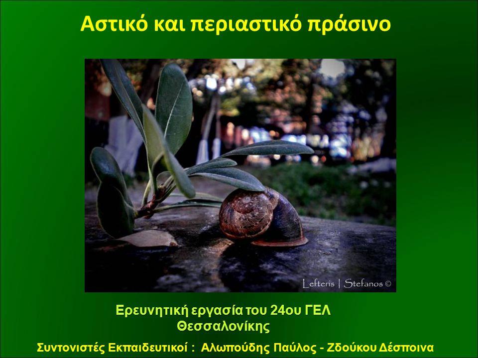 Αστικό και περιαστικό πράσινο Ερευνητική εργασία του 24ου ΓΕΛ Θεσσαλονίκης Συντονιστές Εκπαιδευτικοί : Αλωπούδης Παύλος - Ζδούκου Δέσποινα