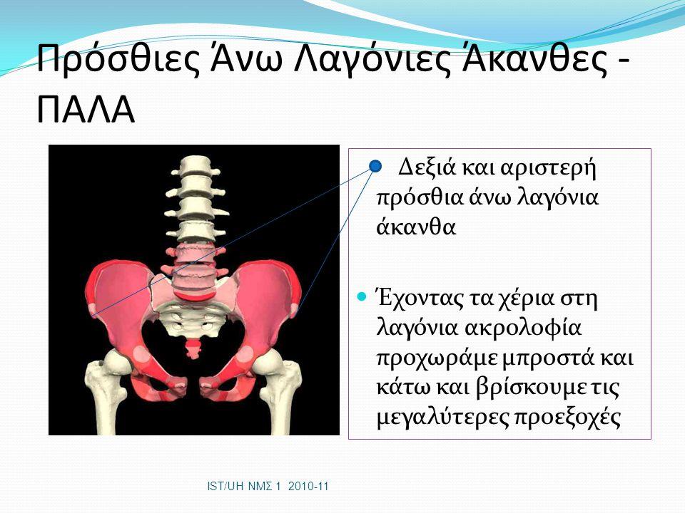 Παθητική ανεπάρκεια Π.χ.