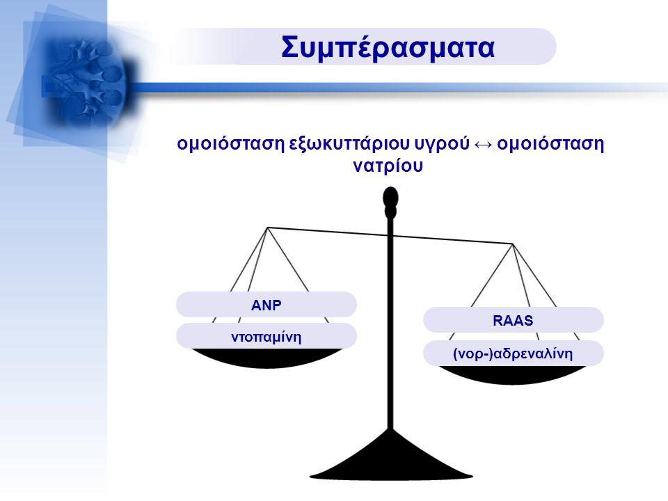Συμπέρασματα RAAS (νορ-)αδρεναλίνη ΑΝΡ ντοπαμίνη ομοιόσταση εξωκυττάριου υγρού ↔ ομοιόσταση νατρίου