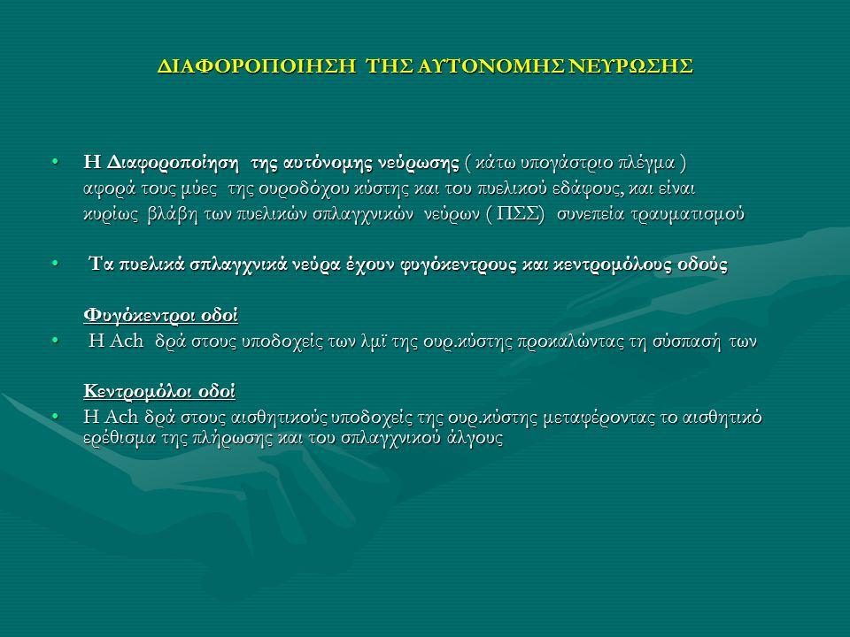 ΔΙΑΦΟΡΟΠΟΙΗΣΗ ΤΗΣ ΑΥΤΟΝΟΜΗΣ ΝΕΥΡΩΣΗΣ Η Διαφοροποίηση της αυτόνομης νεύρωσης ( κάτω υπογάστριο πλέγμα )Η Διαφοροποίηση της αυτόνομης νεύρωσης ( κάτω υπ