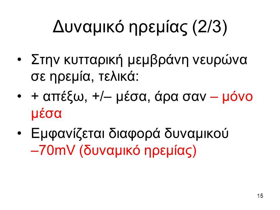 15 Δυναμικό ηρεμίας (2/3) Στην κυτταρική μεμβράνη νευρώνα σε ηρεμία, τελικά: + απέξω, +/– μέσα, άρα σαν – μόνο μέσα Εμφανίζεται διαφορά δυναμικού –70mV (δυναμικό ηρεμίας)