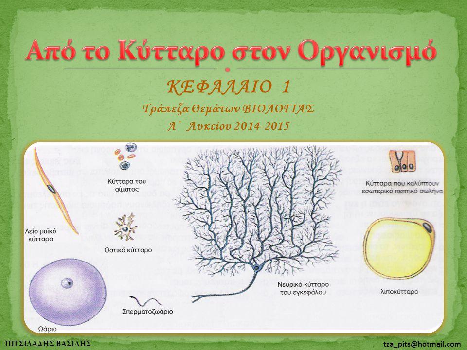 2 ΠΙΤΣΙΛΑΔΗΣ ΒΑΣΙΛΗΣ tza_pits@hotmail.com 1o Διαγώνισμα - 11207 2o Διαγώνισμα - 11208 ΘΕΜΑ Δ Το ανθρώπινο σώμα, όπως και το σώμα κάθε πολυκύτταρου οργανισμού αποτελείται από πολλά διαφορετικά είδη κυττάρων, ιστών, οργάνων και συστημάτων και όχι μόνο από ένα είδος κυττάρου, ιστού κ.ο.κ.