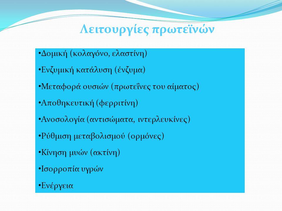 Λειτουργίες πρωτεϊνών Δομική (κολαγόνο, ελαστίνη) Ενζυμική κατάλυση (ένζυμα) Μεταφορά ουσιών (πρωτεΐνες του αίματος) Αποθηκευτική (φερριτίνη) Ανοσολογία (αντισώματα, ιντερλευκίνες) Ρύθμιση μεταβολισμού (ορμόνες) Κίνηση μυών (ακτίνη) Ισορροπία υγρών Ενέργεια