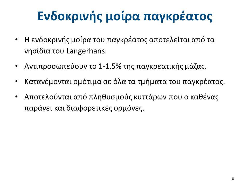 Μικροανατομική μορφολογία ενδοκρινούς και εξωκρινούς μοίρας Blausen 0701 PancreaticTissue , από BruceBlaus διαθέσιμο με άδεια CC BY 3.0Blausen 0701 PancreaticTissue BruceBlausCC BY 3.0 7