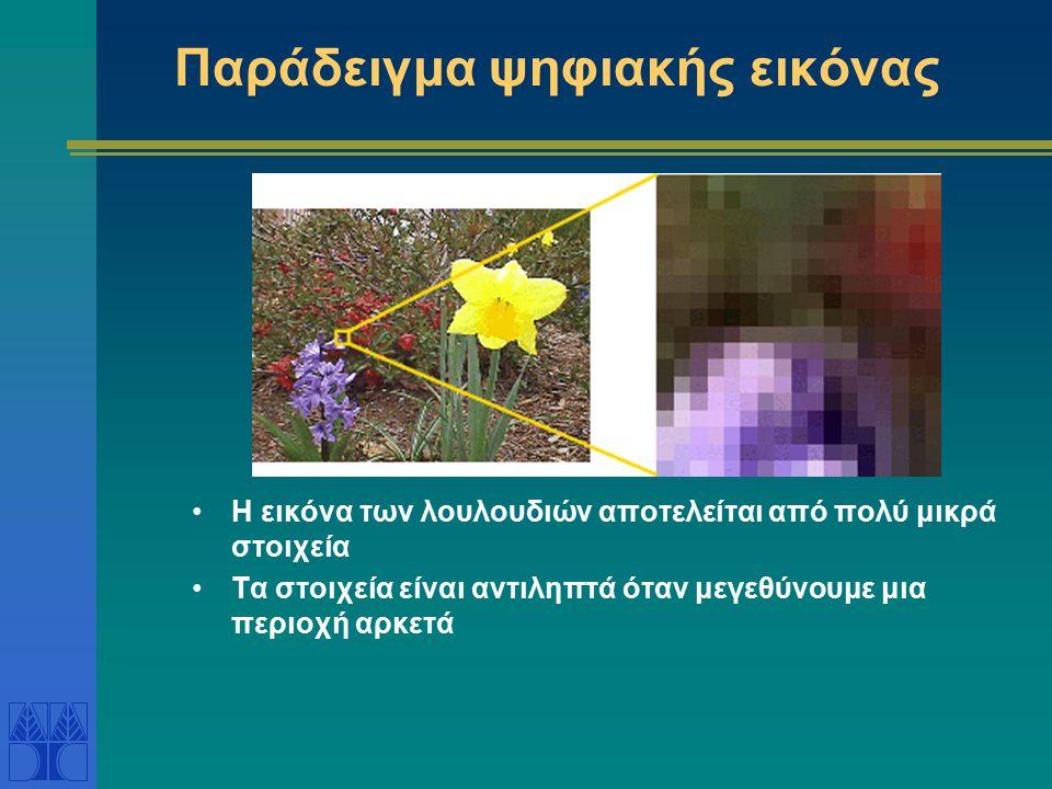 Παράδειγμα ψηφιακής εικόνας Η εικόνα των λουλουδιών αποτελείται από πολύ μικρά στοιχεία Τα στοιχεία είναι αντιληπτά όταν μεγεθύνουμε μια περιοχή αρκετά