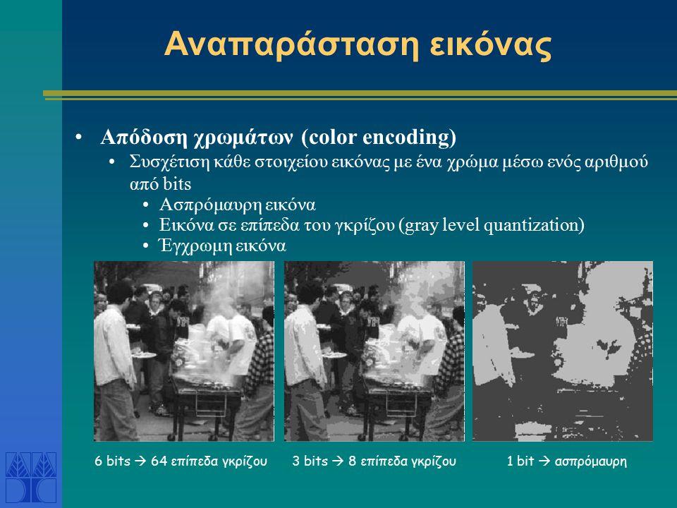 Αναπαράσταση εικόνας Απόδοση χρωμάτων (color encoding) Συσχέτιση κάθε στοιχείου εικόνας με ένα χρώμα μέσω ενός αριθμού από bits Ασπρόμαυρη εικόνα Εικόνα σε επίπεδα του γκρίζου (gray level quantization) Έγχρωμη εικόνα 3 bits  8 επίπεδα γκρίζου1 bit  ασπρόμαυρη6 bits  64 επίπεδα γκρίζου