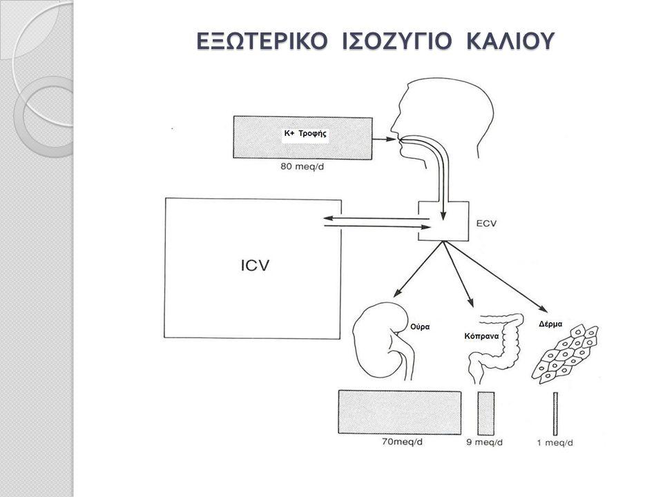ΕΞΩΤΕΡΙΚΟ ΙΣΟΖΥΓΙΟ ΚΑΛΙΟΥ