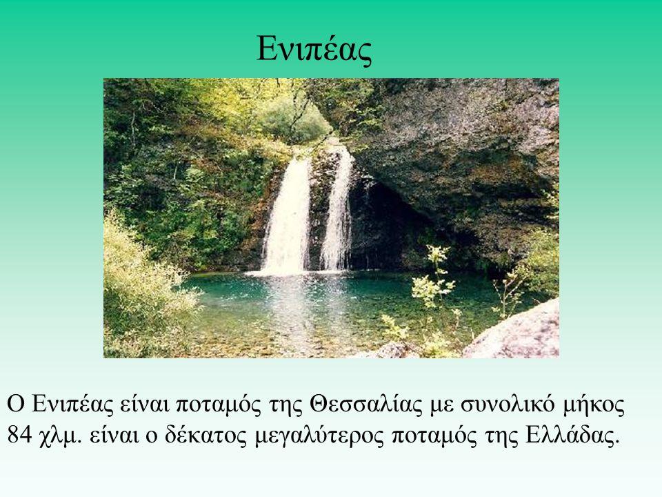 Ο Ενιπέας είναι ποταμός της Θεσσαλίας με συνολικό μήκος 84 χλμ.