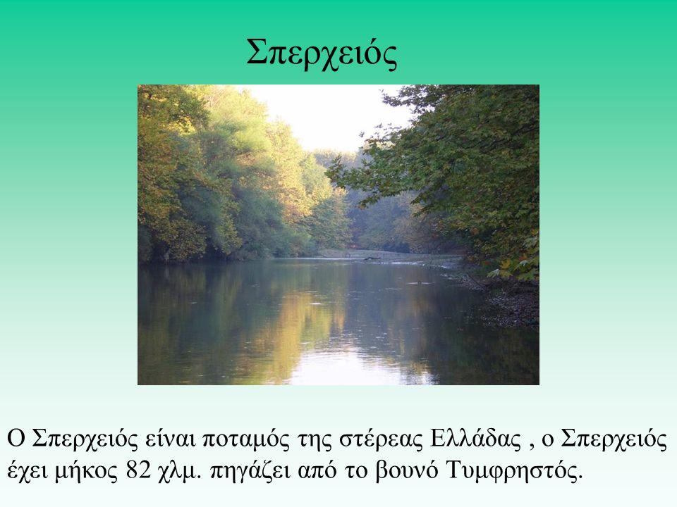 Ο Σπερχειός είναι ποταμός της στέρεας Ελλάδας, o Σπερχειός έχει μήκος 82 χλμ. πηγάζει από το βουνό Τυμφρηστός. Σπερχειός