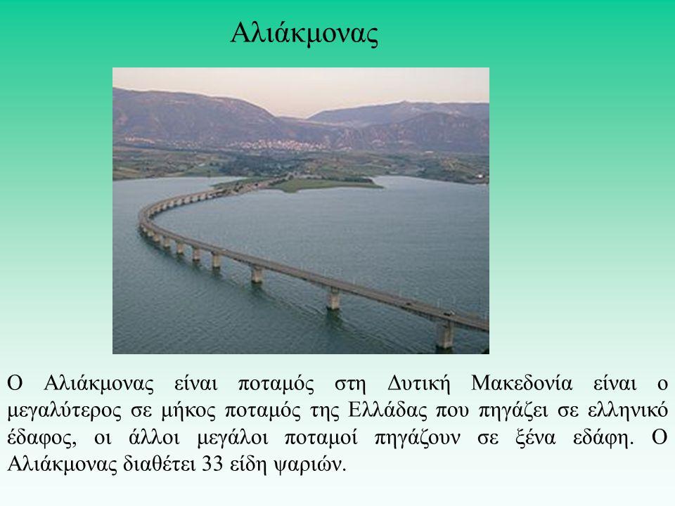 Ο Αλιάκμονας είναι ποταμός στη Δυτική Μακεδονία είναι ο μεγαλύτερος σε μήκος ποταμός της Ελλάδας που πηγάζει σε ελληνικό έδαφος, οι άλλοι μεγάλοι ποτα