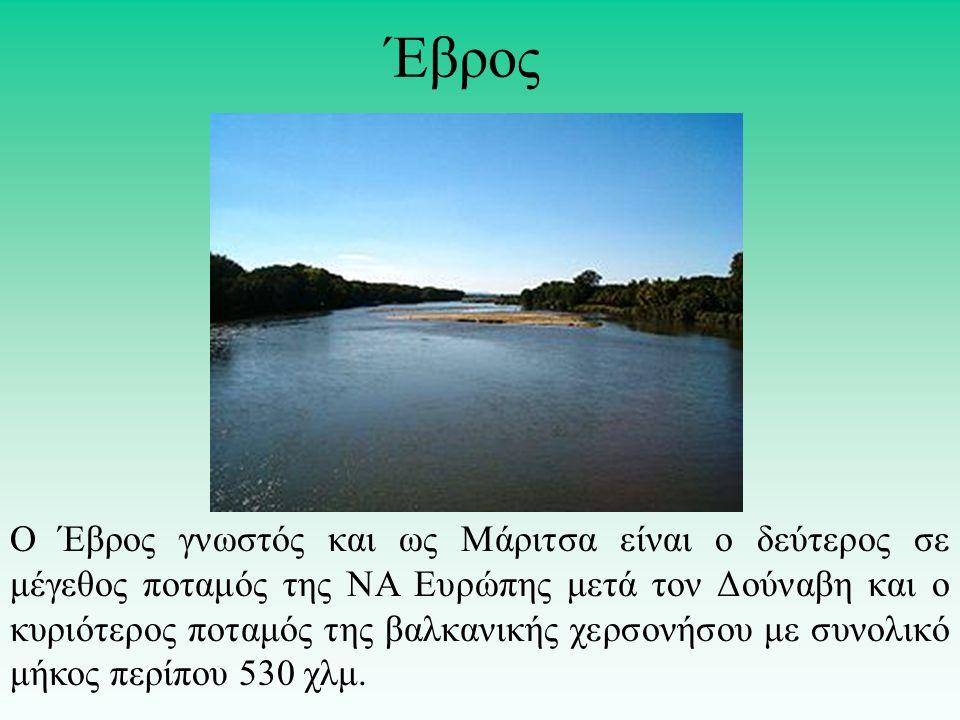 Ο Έβρος γνωστός και ως Μάριτσα είναι ο δεύτερος σε μέγεθος ποταμός της ΝΑ Ευρώπης μετά τον Δούναβη και ο κυριότερος ποταμός της βαλκανικής χερσονήσου με συνολικό μήκος περίπου 530 χλμ.