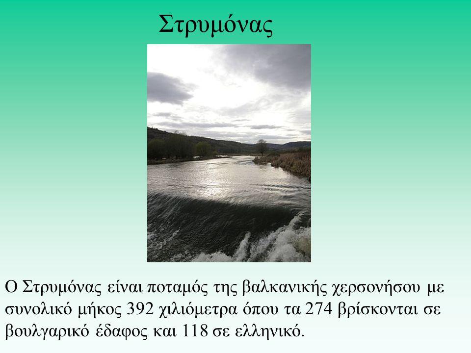 Ο Στρυμόνας είναι ποταμός της βαλκανικής χερσονήσου με συνολικό μήκος 392 χιλιόμετρα όπου τα 274 βρίσκονται σε βουλγαρικό έδαφος και 118 σε ελληνικό.
