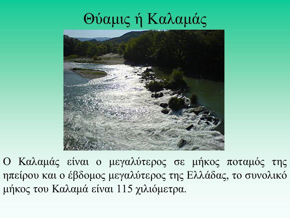 Ο Καλαμάς είναι ο μεγαλύτερος σε μήκος ποταμός της ηπείρου και ο έβδομος μεγαλύτερος της Ελλάδας, το συνολικό μήκος του Καλαμά είναι 115 χιλιόμετρα. Θ
