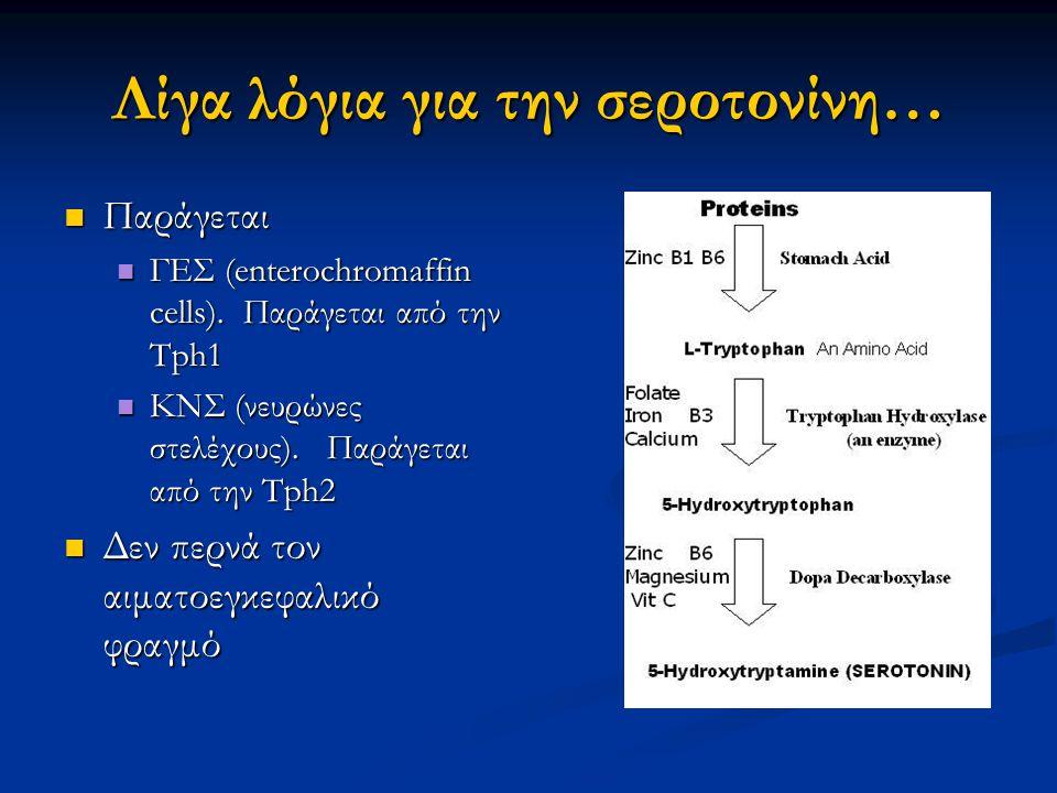 Λίγα λόγια για την σεροτονίνη… Παράγεται Παράγεται ΓΕΣ (enterochromaffin cells).