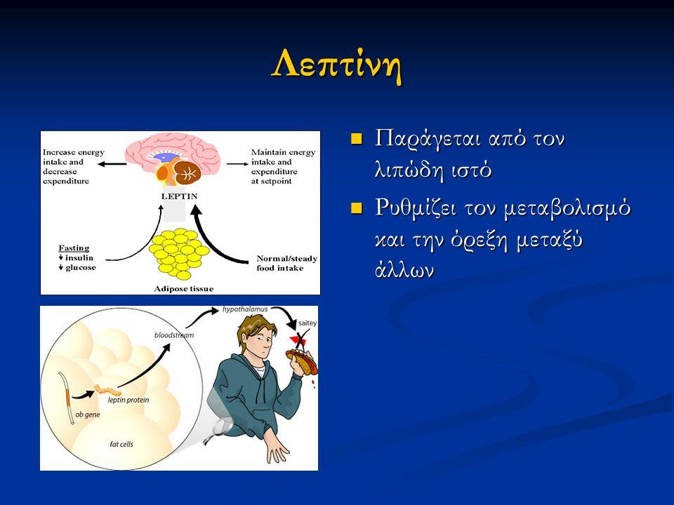 Λεπτίνη Παράγεται από τον λιπώδη ιστό Παράγεται από τον λιπώδη ιστό Ρυθμίζει τον μεταβολισμό και την όρεξη μεταξύ άλλων Ρυθμίζει τον μεταβολισμό και την όρεξη μεταξύ άλλων