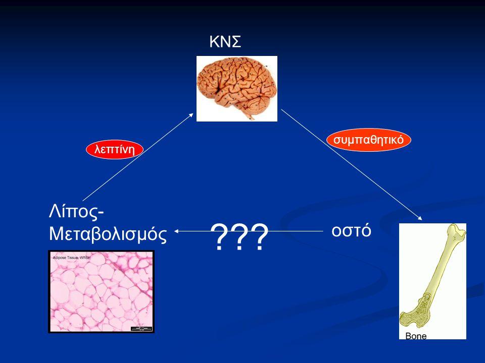 Λίπος- Μεταβολισμός ΚΝΣ οστό λεπτίνη συμπαθητικό ???