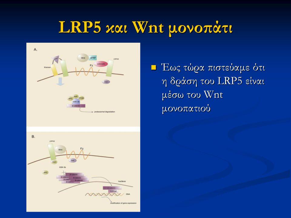 Οι αναστολείς Tph1 είναι υποσχόμενα μόρια για την θεραπεία της οστεπόρωσης Οι αναστολείς Tph1 είναι υποσχόμενα μόρια για την θεραπεία της οστεπόρωσης Τα SSRI μάλλον αυξάνουν τον κίνδυνο οστεοπόρωσης Τα SSRI μάλλον αυξάνουν τον κίνδυνο οστεοπόρωσης