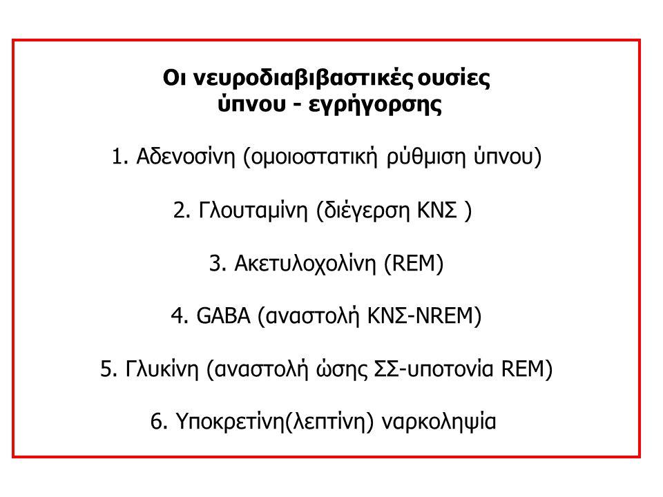 Οι νευροδιαβιβαστικές ουσίες ύπνου - εγρήγορσης 1. Αδενοσίνη (ομοι ο στατική ρύθμιση ύπνου) 2. Γλουταμίνη (διέγερση ΚΝΣ ) 3. Ακετυλοχολίνη (REM) 4. GA
