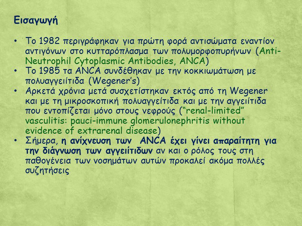 Εισαγωγή Το 1982 περιγράφηκαν για πρώτη φορά αντισώματα εναντίον αντιγόνων στο κυτταρόπλασμα των πολυμορφοπυρήνων (Anti- Neutrophil Cytoplasmic Antibodies, ANCA) To 1985 τα ANCA συνδέθηκαν με την κοκκιωμάτωση με πολυαγγειίτιδα (Wegener's) Αρκετά χρόνια μετά συσχετίστηκαν εκτός από τη Wegener και με τη μικροσκοπική πολυαγγείτιδα και με την αγγειίτιδα που εντοπίζεται μόνο στους νεφρούς ( renal-limited vasculitis: pauci-immune glomerulonephritis without evidence of extrarenal disease) Σήμερα, η ανίχνευση των ANCA έχει γίνει απαραίτητη για την διάγνωση των αγγειίτιδων αν και ο ρόλος τους στη παθογένεια των νοσημάτων αυτών προκαλεί ακόμα πολλές συζητήσεις