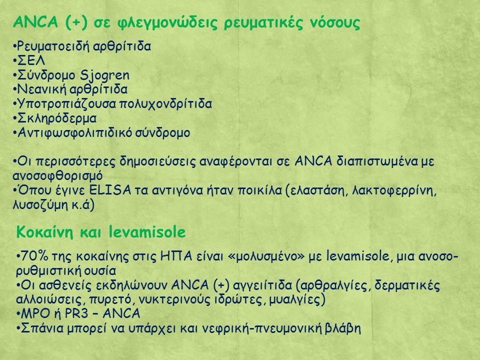 ANCA (+) σε φλεγμονώδεις ρευματικές νόσους Ρευματοειδή αρθρίτιδα ΣΕΛ Σύνδρομο Sjogren Νεανική αρθρίτιδα Υποτροπιάζουσα πολυχονδρίτιδα Σκληρόδερμα Αντιφωσφολιπιδικό σύνδρομο Οι περισσότερες δημοσιεύσεις αναφέρονται σε ANCA διαπιστωμένα με ανοσοφθορισμό Όπου έγινε ELISA τα αντιγόνα ήταν ποικίλα (ελαστάση, λακτοφερρίνη, λυσοζύμη κ.ά) Κοκαίνη και levamisole 70% της κοκαίνης στις ΗΠΑ είναι «μολυσμένο» με levamisole, μια ανοσο- ρυθμιστική ουσία Οι ασθενείς εκδηλώνουν ANCA (+) αγγειίτιδα (αρθραλγίες, δερματικές αλλοιώσεις, πυρετό, νυκτερινούς ιδρώτες, μυαλγίες) MPO ή PR3 – ANCA Σπάνια μπορεί να υπάρχει και νεφρική-πνευμονική βλάβη