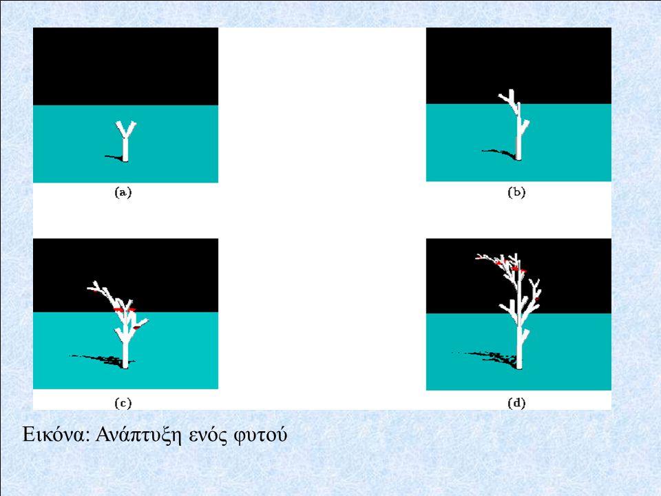 Εικόνα: Ανάπτυξη ενός φυτού
