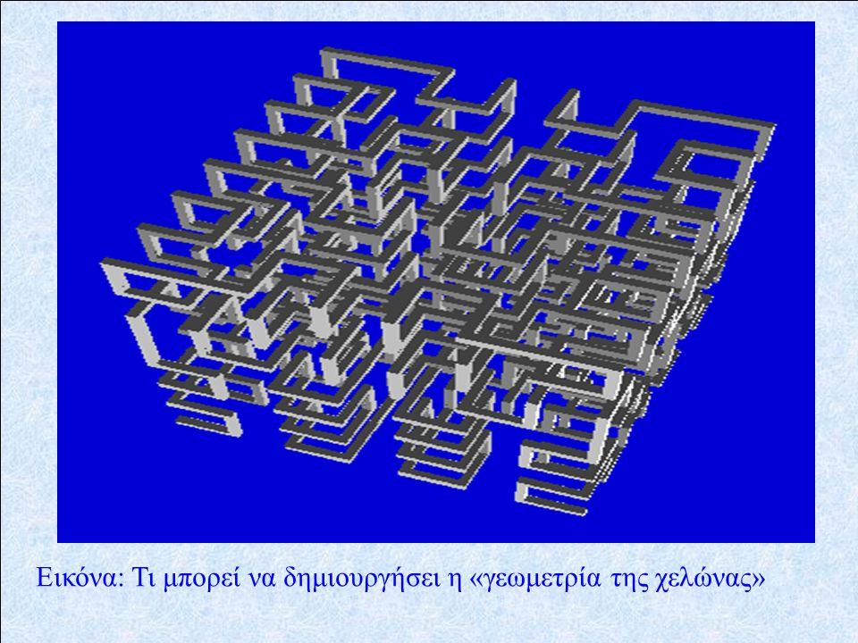 Εικόνα: Τι μπορεί να δημιουργήσει η «γεωμετρία της χελώνας»