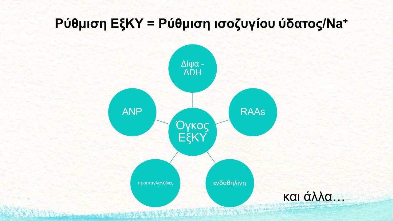 Ρύθμιση ΕξΚΥ = Ρύθμιση ισοζυγίου ύδατος/Na + Όγκος ΕξΚΥ Δίψα - ADH RAAs ενδοθηλίνη προσταγλανδίνες ANP και άλλα…