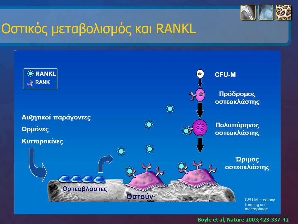 Οστικός μεταβολισμός και RANKL Αυξητικοί παράγοντες Ορμόνες Κυτταροκίνες RANK RANKL Ώριμος οστεοκλάστης CFU-M Πρόδρομος οστεοκλάστης Πολυπύρηνος οστεο