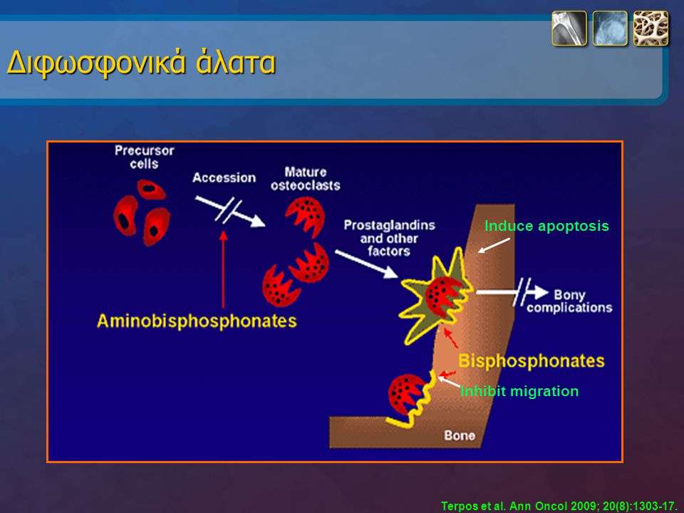 Induce apoptosis Inhibit migration Διφωσφονικά άλατα Terpos et al. Ann Oncol 2009; 20(8):1303-17.
