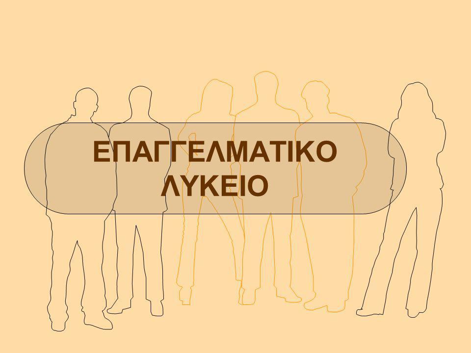 ΕΠΑΓΓΕΛΜΑΤΙΚΟ ΛΥΚΕΙΟ ΟΙΚΟΝΟΜΙΑ-ΔΙΟΙΚΗΣΗ ΑΣΦΑΛΙΣΤΗΣ