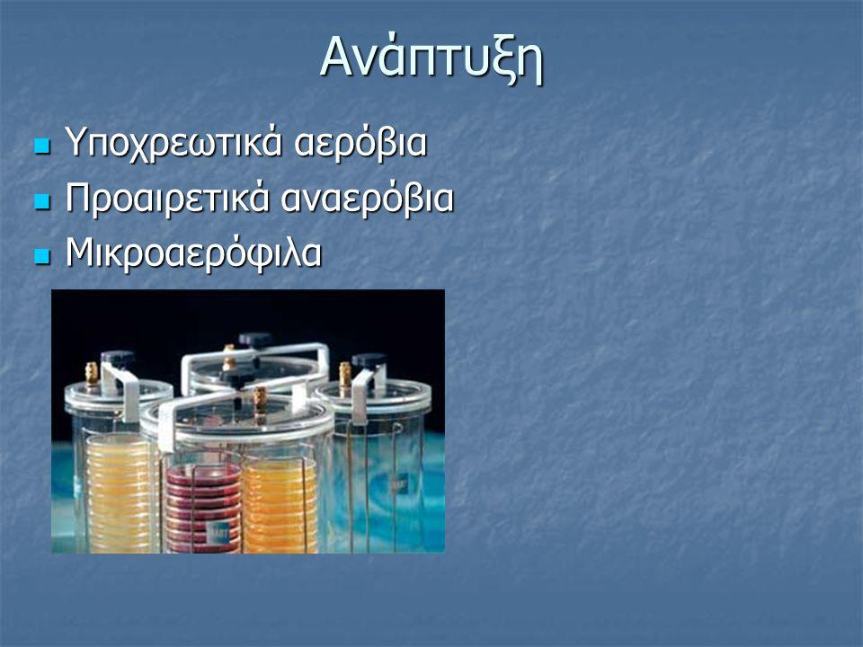 Ανάπτυξη Υποχρεωτικά αερόβια Υποχρεωτικά αερόβια Προαιρετικά αναερόβια Προαιρετικά αναερόβια Μικροαερόφιλα Μικροαερόφιλα