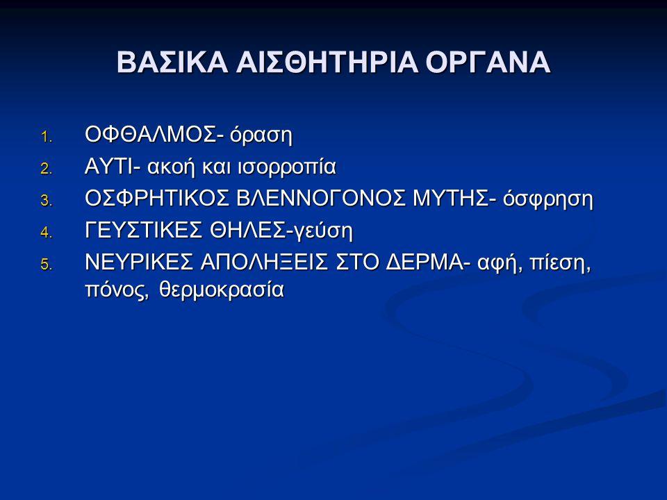 ΒΑΣΙΚΑ ΑΙΣΘΗΤΗΡΙΑ ΟΡΓΑΝΑ 1. ΟΦΘΑΛΜΟΣ- όραση 2. ΑΥΤΙ- ακοή και ισορροπία 3. ΟΣΦΡΗΤΙΚΟΣ ΒΛΕΝΝΟΓΟΝΟΣ ΜΥΤΗΣ- όσφρηση 4. ΓΕΥΣΤΙΚΕΣ ΘΗΛΕΣ-γεύση 5. ΝΕΥΡΙΚΕΣ