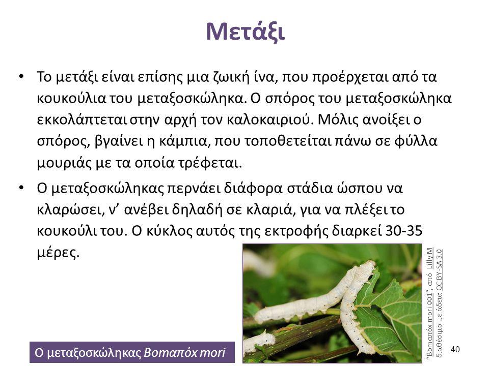 Μετάξι Το μετάξι είναι επίσης μια ζωική ίνα, που προέρχεται από τα κουκούλια του μεταξοσκώληκα. Ο σπόρος του μεταξοσκώληκα εκκολάπτεται στην αρχή τον