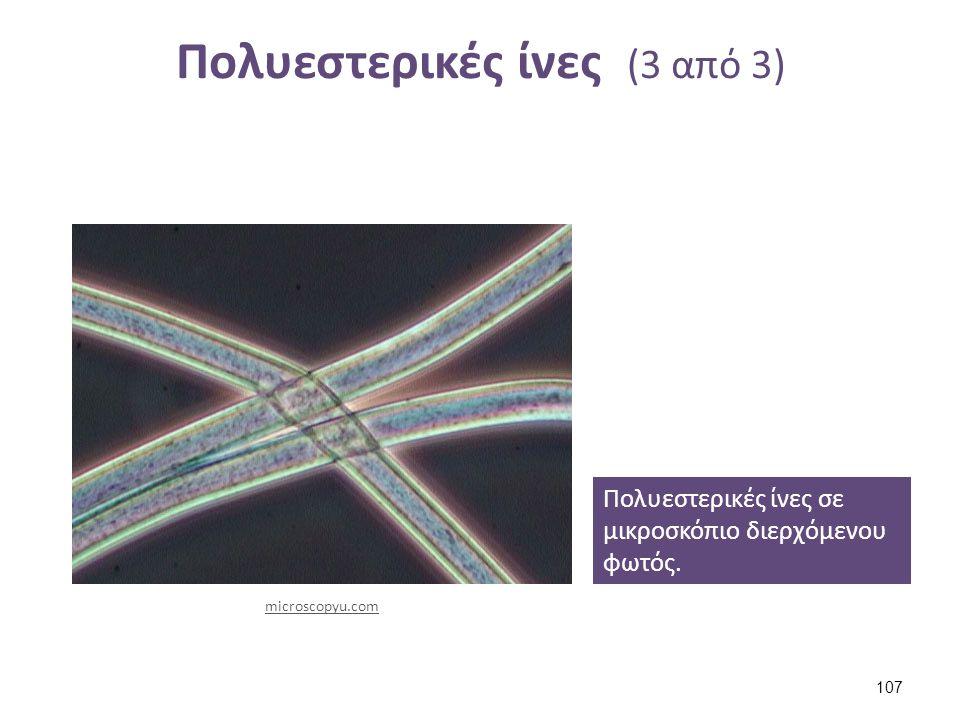 Πολυεστερικές ίνες (3 από 3) Πολυεστερικές ίνες σε μικροσκόπιο διερχόμενου φωτός. microscopyu.com 107