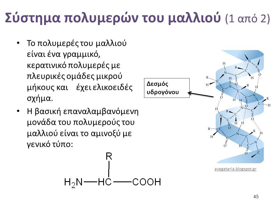 Σύστημα πολυμερών του μαλλιού (1 από 2) Το πολυμερές του μαλλιού είναι ένα γραμμικό, κερατινικό πολυμερές με πλευρικές ομάδες μικρού μήκους και έχει ε