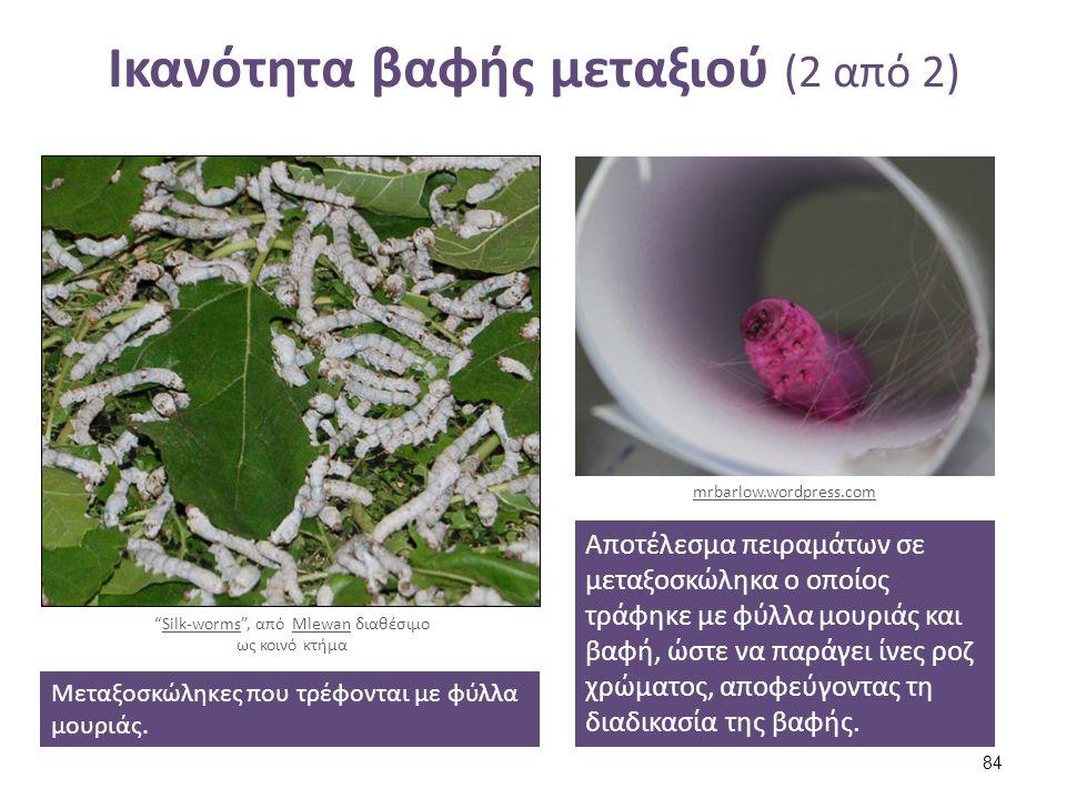 """Ικανότητα βαφής μεταξιού (2 από 2) Μεταξοσκώληκες που τρέφονται με φύλλα μουριάς. """"Silk-worms"""", από Mlewan διαθέσιμο ως κοινό κτήμαSilk-wormsMlewan Απ"""