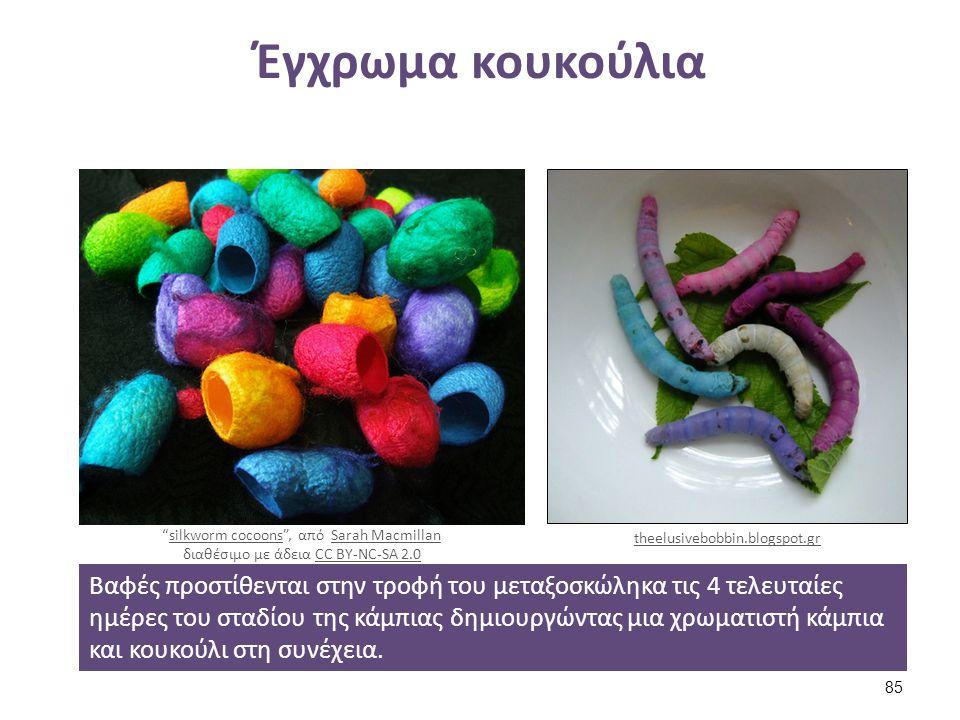 Έγχρωμα κουκούλια Βαφές προστίθενται στην τροφή του μεταξοσκώληκα τις 4 τελευταίες ημέρες του σταδίου της κάμπιας δημιουργώντας μια χρωματιστή κάμπια