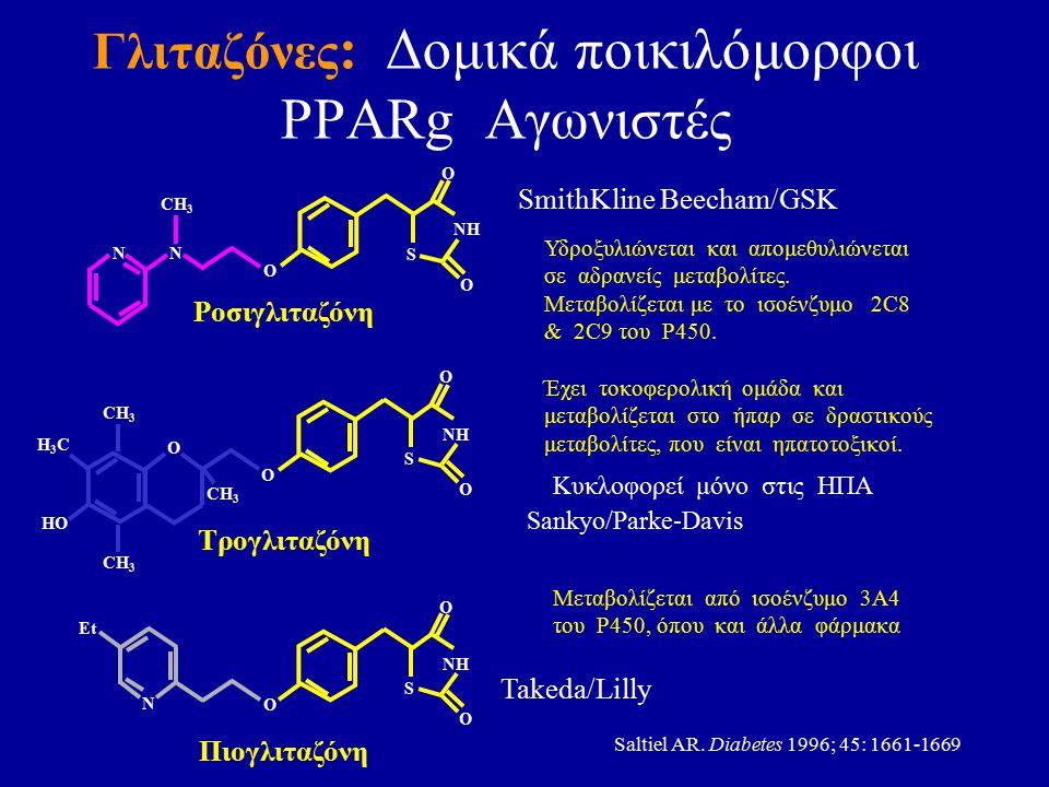 Γλιταζόνες : Δομικά ποικιλόμορφοι PPARg Αγωνιστές Sankyo/Parke-Davis SmithKline Beecham/GSK Takeda/Lilly Πιογλιταζόνη H3CH3C HO O Τρογλιταζόνη Ροσιγλι