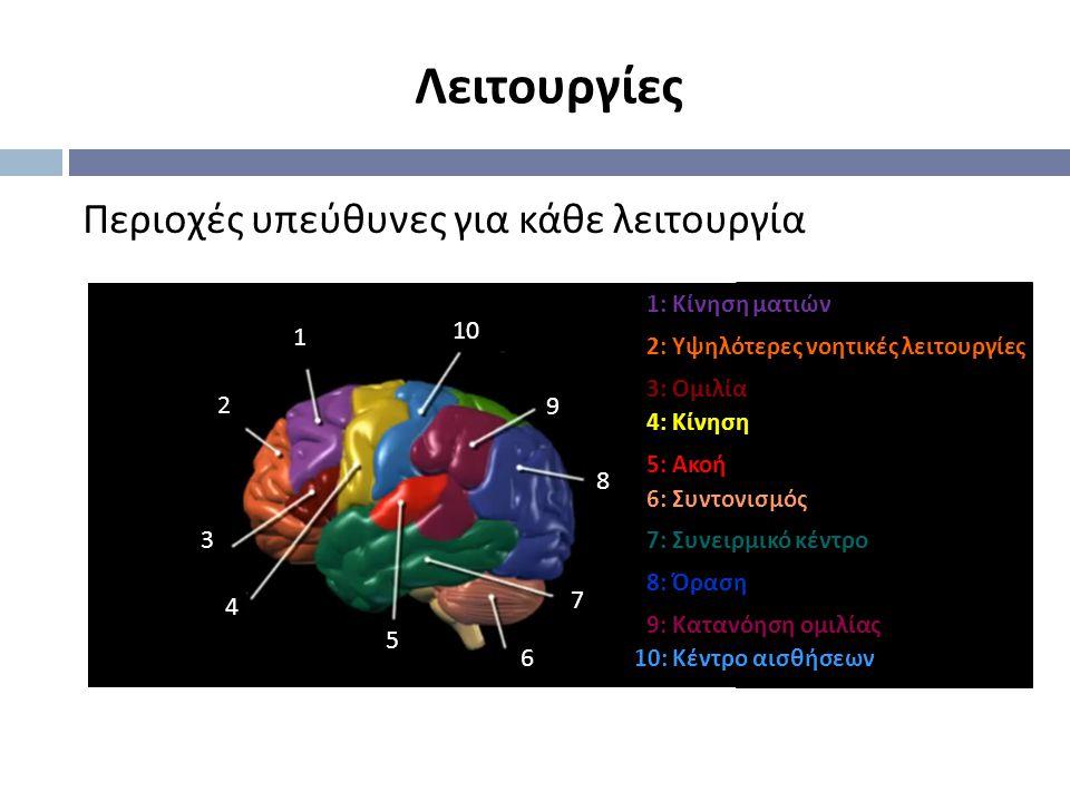 Περιοχές υπεύθυνες για κάθε λειτουργία 1 2 3 4 5 6 7 8 9 10 1: Κίνηση ματιών 2: Υψηλότερες νοητικές λειτουργίες 3: Ομιλία 4: Κίνηση 5: Ακοή 6: Συντονισμός 7: Συνειρμικό κέντρο 8: Όραση 9: Κατανόηση ομιλίας 10: Κέντρο αισθήσεων Λειτουργίες