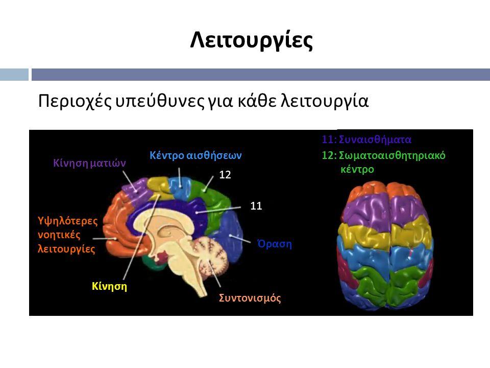 Περιοχές υπεύθυνες για κάθε λειτουργία Κίνηση ματιών Υψηλότερες νοητικές λειτουργίες Κίνηση Συντονισμός 11: Συναισθήματα Όραση Κέντρο αισθήσεων 11 12 12: Σωματοαισθητηριακό κέντρο Λειτουργίες
