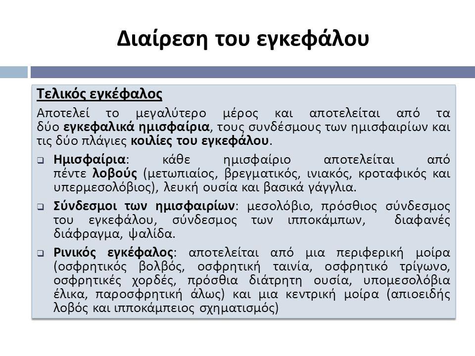 Τελικός εγκέφαλος Α π οτελεί το μεγαλύτερο μέρος και α π οτελείται α π ό τα δύο εγκεφαλικά ημισφαίρια, τους συνδέσμους των ημισφαιρίων και τις δύο π λάγιες κοιλίες του εγκεφάλου.