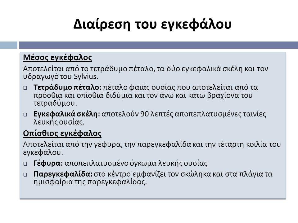 Μέσος εγκέφαλος Α π οτελείται α π ό το τετράδυμο π έταλο, τα δύο εγκεφαλικά σκέλη και τον υδραγωγό του Sylvius.