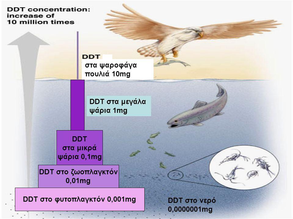 DDT στο φυτοπλαγκτόν 0,001mg DDT στο ζωοπλαγκτόν 0,01mg DDT στα μικρά ψάρια 0,1mg DDT στα μεγάλα ψάρια 1mg στα ψαροφάγα πουλιά 10mg DDT στο νερό 0,000
