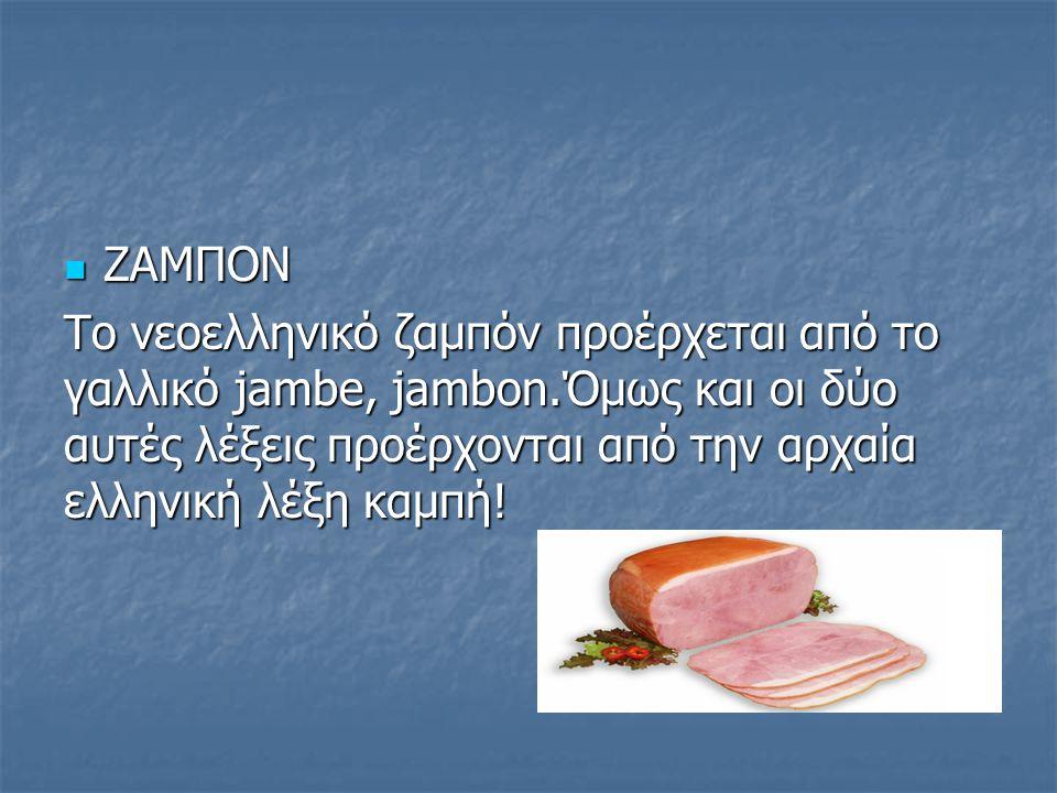 ΖΑΜΠΟΝ ΖΑΜΠΟΝ Το νεοελληνικό ζαμπόν προέρχεται από το γαλλικό jambe, jambon.Όμως και οι δύο αυτές λέξεις προέρχονται από την αρχαία ελληνική λέξη καμπ