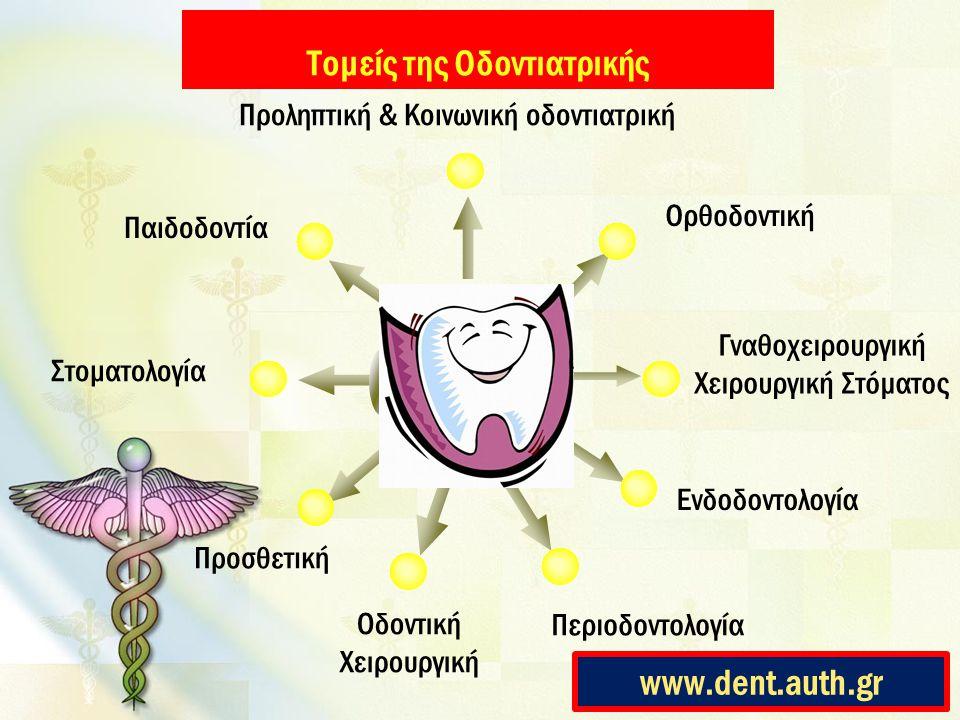 Τομείς της Οδοντιατρικής Title Ορθοδοντική Παιδοδοντία Στοματολογία Προσθετική Γναθοχειρουργική Χειρουργική Στόματος Οδοντική Χειρουργική Ενδοδοντολογ